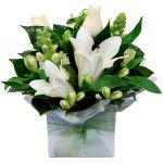 Dainty posy style arrangement with an array of pretty white seasonal flowers, complimented with a touch of foliage, presented in a box. Note: This arrangement contains scented lilies. For more information, please contact. Melbourne Florist, 89 Bridge Rd, Richmond, Victoria 3121, Phone: 03 9421 5558, www.melbourneflorist.com.au