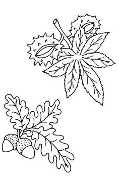 Coloriage Dessins. Nature 73