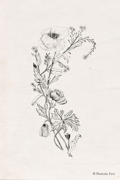 Nadezda Fava | WILDFLOWERS Ask a custom tattoo design: ateliergilet[at]gmail.com. Instant high-res download here.