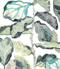Fiddle Leaf Fig Archival Print by unitedthread on Etsy