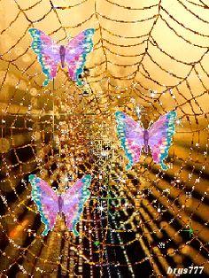 Золотая паутинка с бабочками