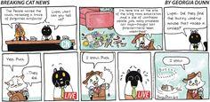 Breaking Cat News by Georgia Dunn for Jun 11, 2017 | Read Comic Strips at GoComics.com