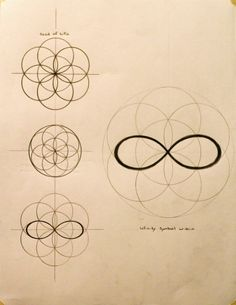 Spiritual Architecture by K. Celestine - Organic Geometry
