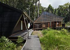 Off-grid home keeps naturally cool in the lush Australian rainforest