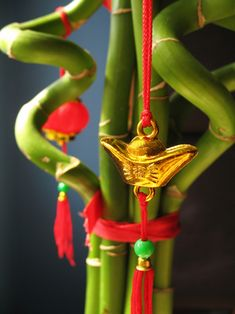 Red ribbon added to the Lucky Bamboo attracts more of positive change