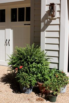 Road Trip: 2015 Southern Living Idea House part 3