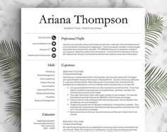 Classic Professional Resume Template for Word and Pages (US Letter & 1 2 a ---CLICK IMAGE FOR MORE--- resume how to write a resume resume tips resume examples for student Resume Help, Resume Tips, Resume Cv, Resume Writing, Resume Examples, Resume Ideas, Resume Format, Resume Design, Simple Resume Template