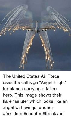Military Quotes, Military Love, I Love America, God Bless America, Angel Flight, Patriotic Pictures, Land Of The Free, American Soldiers, Image Shows