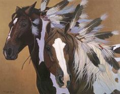 Feathers & beautiful marked horses
