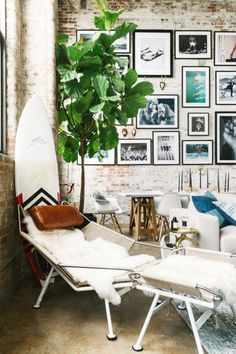 Living space with exposed brick walls, a gallery wall, a fig tree, a Flay Halyard chair, and a surf board