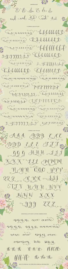 Annabella Calligraphy Script by Emily Spadoni on @creativemarket