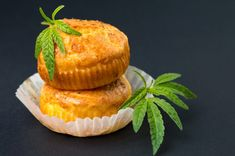 The emerging awareness of CBD in culinary circles will put you on the cutting edge of this exciting new niche in the world of cannabis edibles. Weed Recipes, Marijuana Recipes, Cannabis Edibles, Cannabis Oil, Cannabis Growing, The Next Big Thing, Ganja, Medical Marijuana, Meals