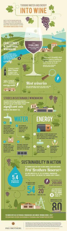 Infografía sobre la elaboración de vinos #infographic #WineLovers #AmarasElVino