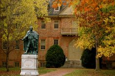 Wren in fall. William and Mary