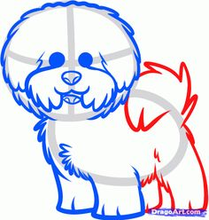 how to draw a bichon frise step 7