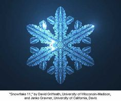 """Snowflake Model 11,"" by David Griffeath (University of Wisconsin-Madison) and Janko Gravner (University of California, Davis)"