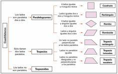 Cuadriláteros: paralelogramos, rombos, romboides y trapecios. Definiciones y propiedades de las figuras, de sus lados, sus diagonales y sus ángulos.