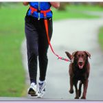 Pooch to 5k-running with your dog... I need this for my dog, she would pull me the whole way!