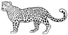 ausmalbilder tiere: malvorlagen | bastelvorlagen |tiere
