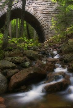 One of the seventeen carriage road bridges built by John Rockefeller in Acadia National Park, Maine.
