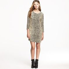 Jules dress in wildcat (with dark black tights¡!)