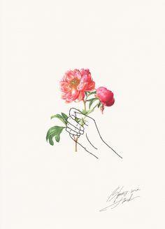 Holding Flowers Design Drawings Art Illustration