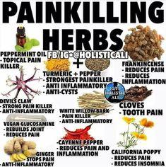 Pin on Natural Remedies & Integrative Health Natural Health Remedies, Natural Cures, Natural Healing, Herbal Remedies, Natural Oil, Health And Nutrition, Health And Wellness, Health Tips, Healing Herbs