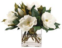 Magnolia flowers. Love.