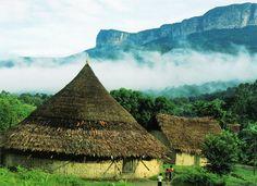 #Churuatas, es una vivienda colectiva propia de los pueblos panare y piaroa, ubicados al sur del #Orinoco estado #Amazonas.
