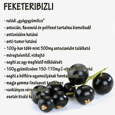 Életmód cikkek : Zöldség és gyümölcsök hatásai Superfood, Smoothies, Healthy Lifestyle, Vitamins, Food And Drink, Health Fitness, Healthy Eating, Herbs, Fruit