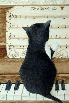 Há dois meios de refúgio contra as misérias da vida: música e gatos.