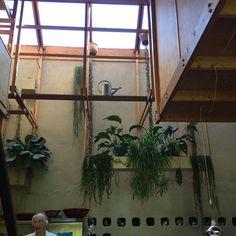Bilderesultat for terje moe villa Ladder Decor, Villa, Architecture, Instagram Posts, Home Decor, Design, Arquitetura, Room Decor, Architecture Illustrations