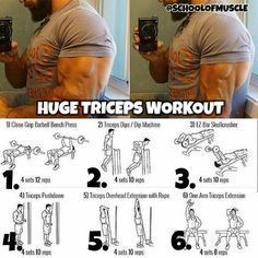 "9,957 Likes, 57 Comments - School Of Muscle (@schoolofmuscle) on Instagram: ""Awesome Tricep Workout ✅. . . . Try them out next time your blasting arms and follow …"""