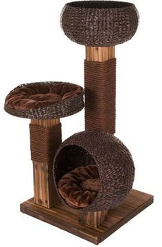 scorched wood cat tree from zooplusuk - affordable modern cat tree made from natural materials
