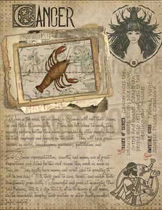 7 pages set about CANCER Astrological Sign Correspondences. They are an ideal addition to your own Wicca Book of Shadows. Astrology Zodiac, Astrology Signs, Astrological Sign, Virgo And Cancer, Zodiac Cancer, Wicca Witchcraft, Cancerian, Hogwarts, Tarot Spreads