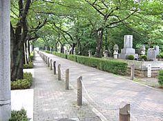 都立青山霊園  都内一等地にもかかわらず、ゆとりある贅沢な人気の霊園です。 年一度の公募では倍率が10倍以上となる人気の都立霊園。