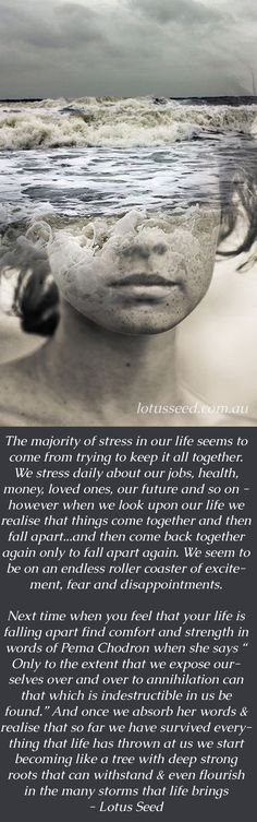 Quotes by Lotus Seed - www.lotusseed.com.au