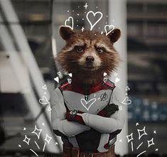 Disney Stitch, Rocket Raccoon, Marvel Wallpaper, Profile Pictures, Guardians Of The Galaxy, Marvel Avengers, Loki, Fanfiction, Avatar