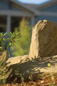 landscaping with boulder rocks - Gardening DIY Life Landscaping With Boulders, Front Yard Landscaping, Landscaping Ideas, Backyard Ideas, Dry Garden, Lawn And Garden, Boulder Rock, Bouldering, Close Up