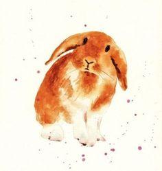bunny (watercolor?) unattributed