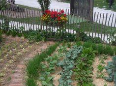 Mini konyhakert 4 lépésben kezdő, időhiányos és derékfájós kiskertészeknek, városi kertészeknek. Garden Works, Vegetable Garden, Pergola, Vegetables, Plants, Household, Gardens, Vegetables Garden, Outdoor Pergola