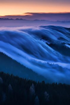 Fog, monte grappa, Veneto, Italia,by Angelo Andreolle, on 500px.