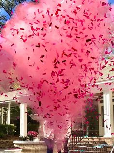 Confetti & Powder Cannon Gender Reveal Both Smoke Powder.- Confetti & Powder Cannon Gender Reveal Both Smoke Powder and Confetti in one Cannon! Smoke Powder Cannons and Confetti Cannons Pink Blue 24 Confetti Cannon & Powder Cannon Gender Reveal Smoke - Confetti Cannon Gender Reveal, Gender Reveal Smoke, Gender Reveal Themes, Gender Reveal Party Decorations, Baby Reveal Ideas, Unique Gender Reveal Ideas, Powder Gender Reveal, Gender Reveal Box, Gender Reveal Balloons
