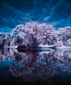 Infrared http://www.instantshift.com/2010/01/20/99-brilliant-examples-of-infrared-photography/