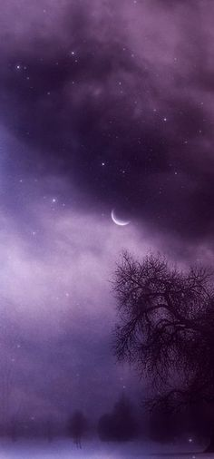 Natures Palette ✿✿ڿڰۣ(̆̃̃-->Donna-NYrockphotogir@twitter.com/ ✯ Beautiful ✯✯ #moon #purple Repins or Likes would be awesome. Don't forget to listen to my music on youtube :) Thank you