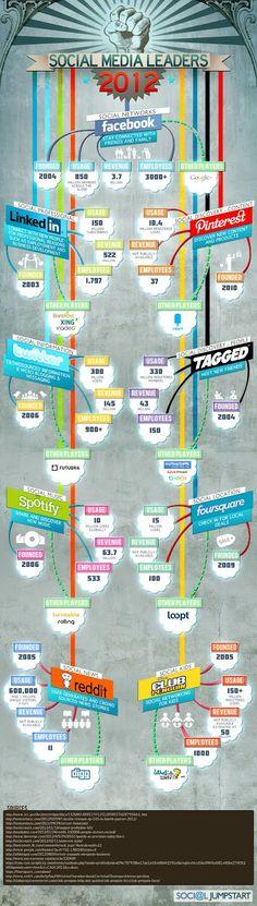 Redes sociales 2012 Datos estadísticos | Pizcos.net