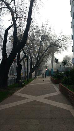 Niebla del mar
