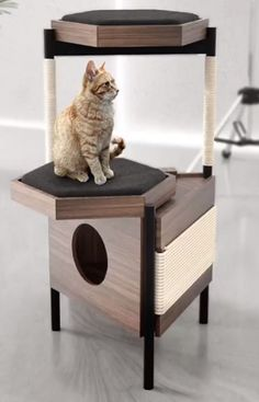 Cat Gym, Diy Cat Tree, Living With Cats, Pet Hotel, Cat Playground, Pet Gear, Cat Shelves, Hamster, Cat Condo