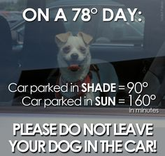 ___ On a 78˚ day, a car parked ___  ⚠️ __  in the 🌚 = 90˚  ___________   __________   in the 🌞= 160˚ ___  ⚠️