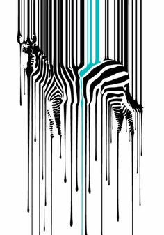 Zebra abstract contours depth perception